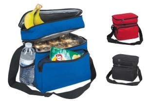 dalix cooler and lunch bag