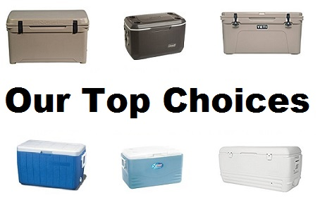 best cooler for the money our top choices