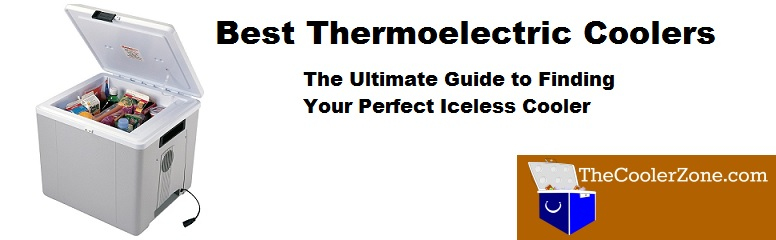 The Best Thermoelectric Cooler  What Iceless Cooler is the Best Buy?