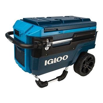 132cbfe9caa Igloo Cooler Reviews - The Best Igloo Coolers