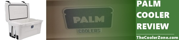 palm cooler review