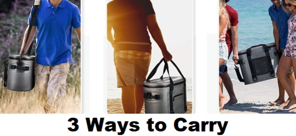 homitt cooler ways to carry